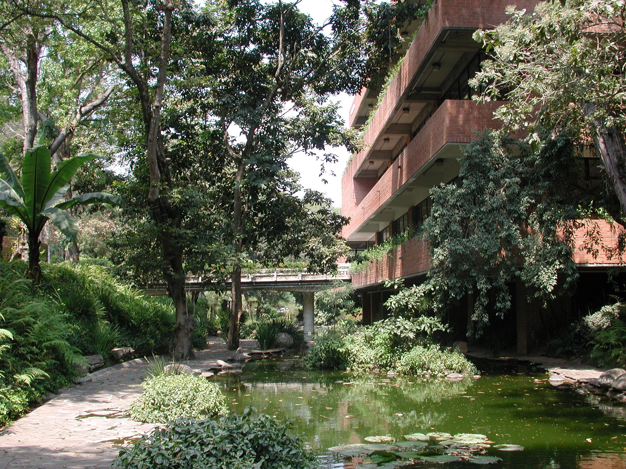 Biblioteca1.jpg