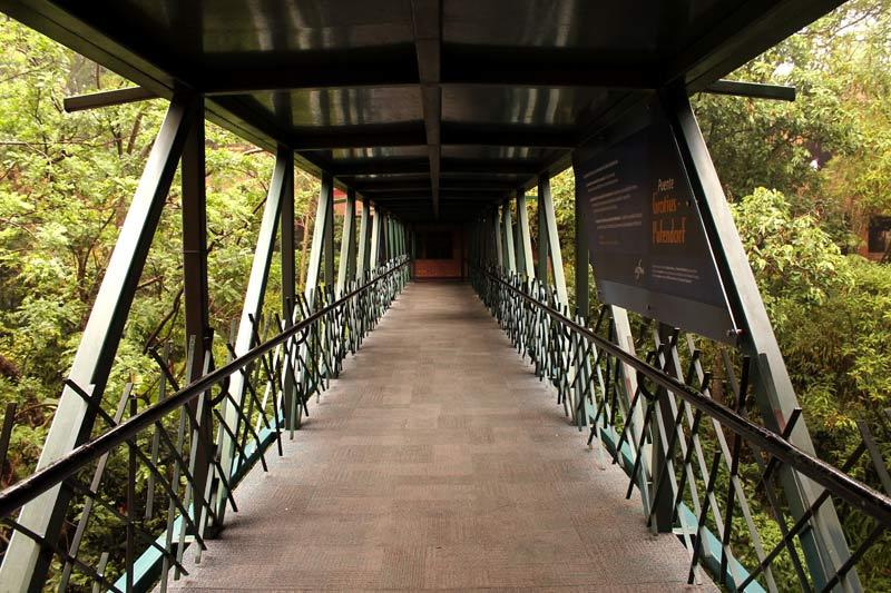 Puente Grocio-Pufendorf en la Universidad Francisco Marroquín.