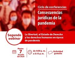 Libertad, estado de derecho, derechos humanos y pandemia en Webinar